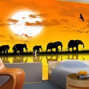 Africa wall papers