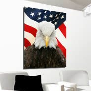 American Eagle wall canvas