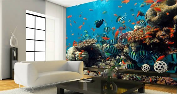Wall Murals aquatica wall murals | dezign with a z