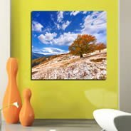 Autumn Tree wall canvas