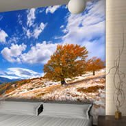 Autumn Tree wall murals
