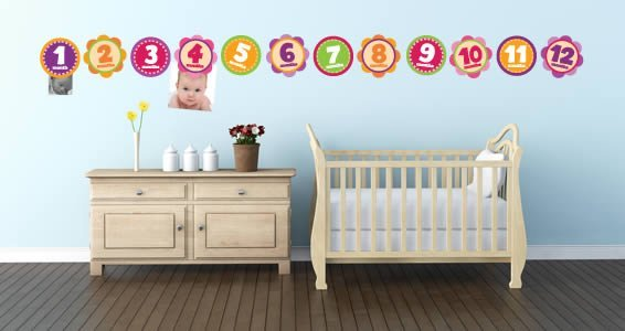 Baby Girl Monthly Decals Pack