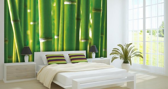 Green bamboo wall murals dezign with a z for Bamboo mural wallpaper