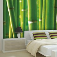 Green Bamboo wall murals