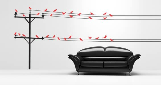 Birds On Wire wall decals