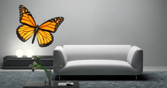 Nice Bright Butterfly Wall Decals