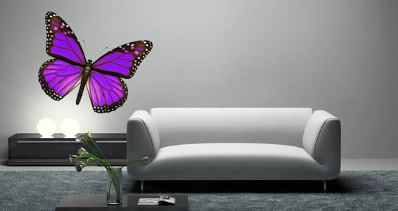 Bright Butterfly Wall Decals Bright Butterfly Wall Decals ...