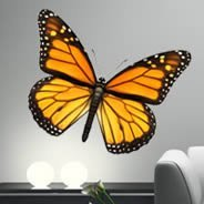 Bright Butterfly wall decals