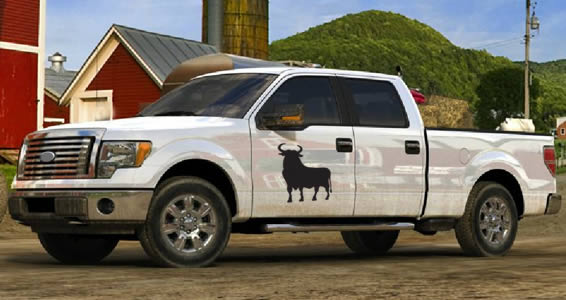 Bull car decal