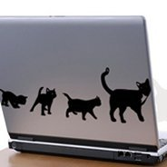 Cats laptop stickers skin