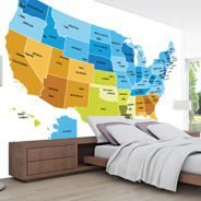 USA Maps wall murals