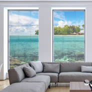Coral Island see through window decals