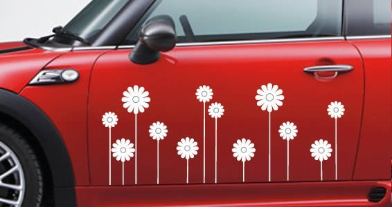Daisies car decal dezign with a z modern business vehicle decals