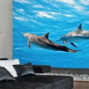 Dolphins wall papers
