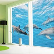 Dolphins see through window decals