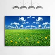 Fields Giant decorative canvas