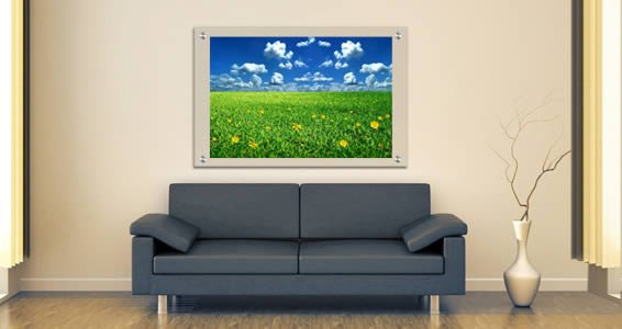 Flowers Grass Field Plexiglass Stand Off
