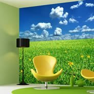 Fields giant wall papers