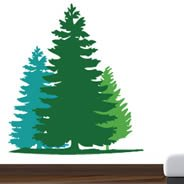 Fir Trees wall decals
