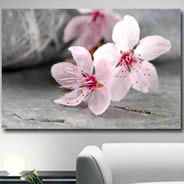 Amazing Flowers digital photo canvas