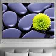 Flower Stones giclee on canvas
