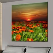 Flowers at Sunset on canvas
