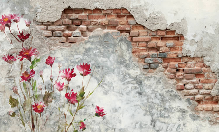 flowers and old wall murals dezign with a z