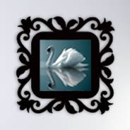 Rococo Pictures frames wall appliques