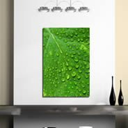 Green Leaf printed on framed canvas