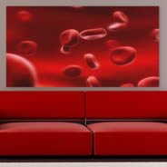 Red Cells high resolution photos on canvas