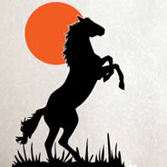 Wild Horse wall decals
