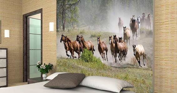 pics photos horse wall murals room wallpaper murals for walls horse images