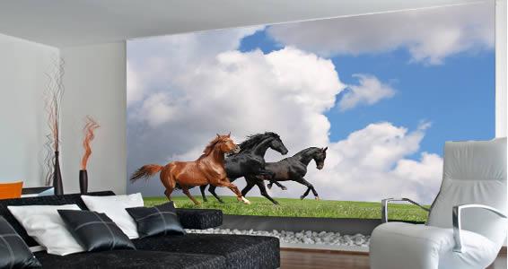 horses wall mural 9 Impressive Horse Wall Murals