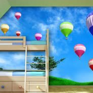 Hot Air Balloons Fields wall murals