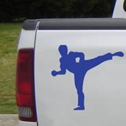 Karate car decals
