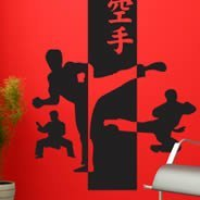 Karate wall stickers