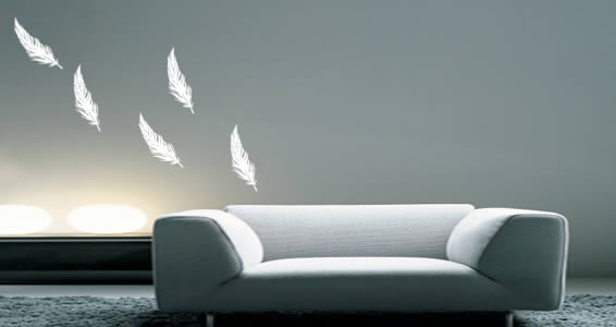 Feathers - vinyl wall decals