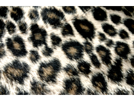 Leopard Ipad decals skin