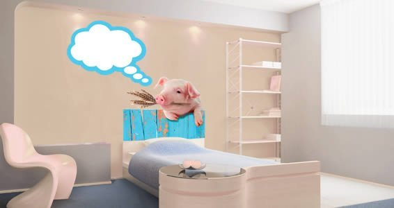 Mister Piggy   Dry Erase Wall Decals