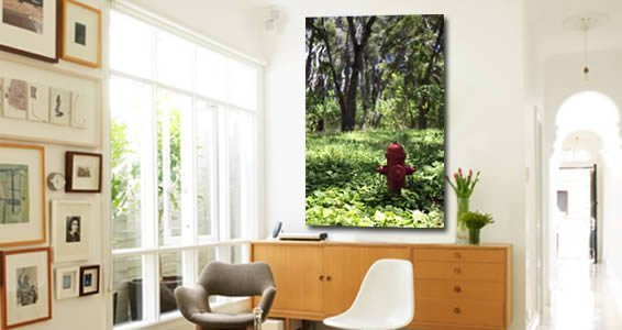 Natural City -Digital Giclee Canvas by Pochette