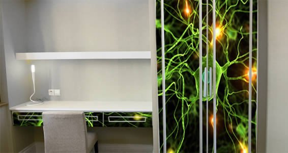 Neurons decal Dry Erase Furniture Skin Decals