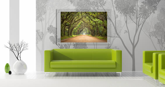 Tree Forest Plexiglass Stand Off