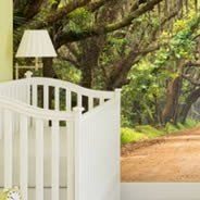 Oak Tree Alley Dry-erase Furniture Decals