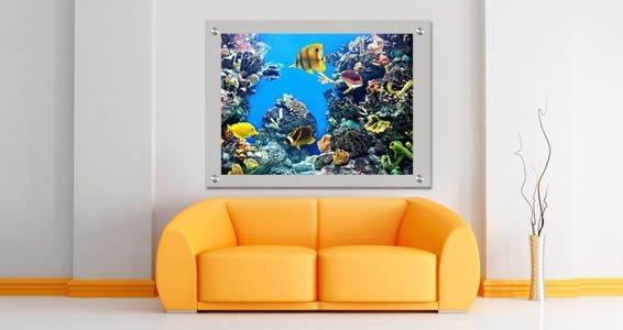 Oceania Sea Fishes Plexiglass Stand Off