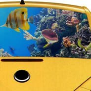 Oceania see through car decal