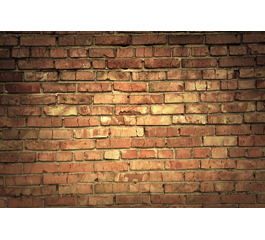 Old Bricks wall mural