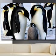 Penguins artist digital canvas