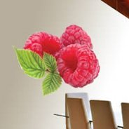 Raspberry Fruit wall decals