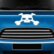 Skull Crossbones car decals
