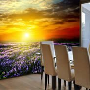 Sunset Lavender Fields wall murals
